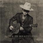 平井大/Love is Beautiful