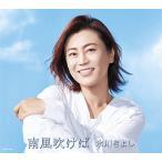 【送料無料選択可】[CD]/氷川きよし/南風吹けば [通常盤/Bタイプ]