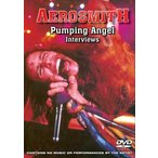 【送料無料選択可】AEROSMITH/Pumping Angel Interviews