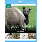 BBC earth アニマル ベビー  野生の成長物語   Blu-ray