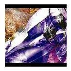 L'Arc〜en〜Ciel/Link/Promised land 2005 [通常盤]