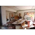 【送料無料選択可】洋画/福島の未来 0.23μSv