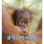 【送料無料選択可】オランウータン / 原タイトル:Eye on the Wild:Orang‐utan (どうぶつの赤ちゃんとおかあさん)/スージー・