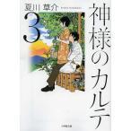 神様のカルテ 3 (小学館文庫)/夏川草介/著(文庫)