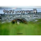 【送料無料選択可】ウミガメいのちをつなぐ岬/櫻井季己/写真・文