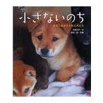 【送料無料選択可】小さないのち まほうをかけられた犬たち/今西乃子 浜田一男(児童書)