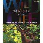 【送料無料選択可】ドキュメンタリー/ワイルドライフ 世界自然遺産 知床 角がつなぐ! エゾシカ 命の物語 [Blu-ray]