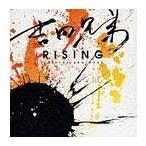 吉田兄弟/RISING