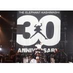 [DVD]/【ゆうメール利用不可】エレファントカシマシ/30th ANNIVERSARY TOUR