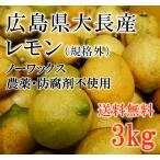 広島レモン 安心のノーワックス、防腐剤不使用(減農薬) 3kg 大長産 瀬戸内 レモン (規格外)