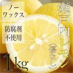 広島県産 瀬戸内レモン 1kg ( 傷なし ) 糖度の高い大長産