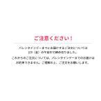【メーカー直販】キットカット ショコラトリー クリスマスギフトボックス