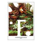 DVD/COCOROCK FOREST CONCERT〜透明森の妖精〜