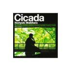 槇原敬之/Cicada