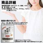 OーOー メダカ 色揚げ専科 成魚用 40g (メダカの餌, 熱帯魚の餌)