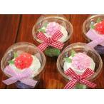 ボックス キッチン 20 クリア カップケーキ コンテナー [モモカ エプロン] 正規輸入品