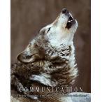 ポスター灰色の材木オオカミ動機付けのポスター アート プリント 11 x 14 WWF 野生動物彫刻ギフト クラス部屋壁の装飾の写真します。 正規輸入品