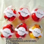 トマト ミニトマト 父の日 赤と黄色のミニトマトが楽しめる6カップセット 送料無料(条件付き)