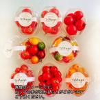 トマト ミニトマト 父の日 カラフルトマトが入ったジュエリーボックスカップ入り8カップセット 送料無料(条件付)