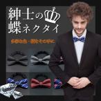 紳士の蝶ネクタイ02 ボウタイ アクセサリー カジュアル ビジネス クール スーツ MR-GEBOWTIE02 予約