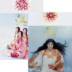 大河ドラマ 江 姫たちの戦国 完全版 DVD全2巻セット【NHK DVD公式】