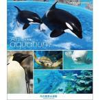 An Aquarium −水族館− 名古屋港水族館 ブルーレイ 【NHK DVD公式】