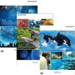 水族館−An Aquarium 沖縄・京都・名古屋港 全3枚セット 【NHK DVD公式】