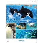 An Aquarium −水族館− 名古屋港水族館 DVD 【NHK DVD公式】