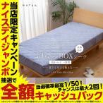 mofua 夏でも冬でもふわさら敷きパッド一体型BOXシーツ(抗菌防臭) シングル