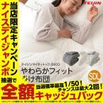 掛け布団 TEIJIN(帝人)快適清潔シリーズ 抗菌 防臭 わた100%使用 やわらかフィット 掛布団 セミダブル NiceCB