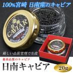 日南キャビア 20g 100%宮崎県日南産 無添加で濃厚な国産キャビア 大切な方へのプレゼントに喜ばれます