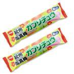 明治チューインガム ガブリチュウ 紀州南高梅 (20本入) 駄菓子 お菓子 チューインガム ソフトキャンディ 飴