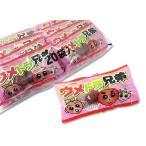 【駄菓子のまとめ買い・梅・昆布系の駄菓子】よっちゃん ウメトラ兄弟 (20袋入)
