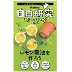 自由研究おたすけキット レモン電池を作ろう  J750560