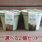 送料無料 野菜 栽培セット 栽培キット 選べる2個セット エコットM2個 家庭菜園 キット セット プレゼント 誕生日 母の日 父の日