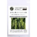 有機種子 固定種 古代小麦 スペルト小麦 種 こむぎ 種子 オーガニック グリーンフィールドプロジェクト 追跡可能メール便選択可
