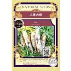 無農薬 自然栽培の種 固定種 三善大根 種 在来種 大根