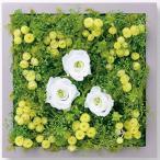 ショッピング雑貨 インテリア 雑貨 壁掛け 植物 grart Garten IMMORTELLE