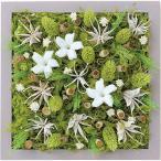 ショッピング雑貨 インテリア 雑貨 壁掛け 植物 grart Garten JASMIN
