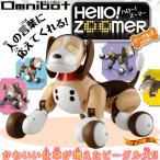 Omnibot ハローズーマー ペットロボット