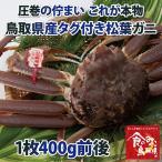 タグ付き 特上松葉ガニ(ズワイガニ)  活 小サイズ1枚(400g前後)(かに/カニ/蟹)