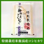 送料無料 平成29年産 【新米】農薬・化学肥料 使用5割以下 特別栽培米5kg