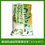 送料無料 平成28年 減農薬 新潟県認証特別栽培米コシヒカリ 5kg