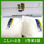送料無料 平成28年 こしいぶき真空パック5kg×2袋 お米 白米