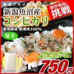 コシヒカリ 1キロ 魚沼産 新米 新潟米 1kg  令和元年産 お米 新潟産 産地直送 米 コメ