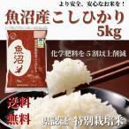 お米 5kg 令和2年産  新米 新潟 県認証 特別栽培米 魚沼産 コシヒカリ 精米 贈り物 お歳暮