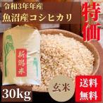 特別価格!訳あり【元年産 新潟県産コシヒカリ】 玄米 30kg 一等米