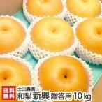 新潟産 梨 新興 贈答用10kg(12〜18玉) 土田農園/のし無料/送料無料