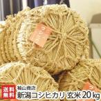 令和元年度米 新潟産コシヒカリ 玄米20kg(10kg袋×2)袖山商店/米屋の蔵出し米/父の日にも/のし無料/送料無料