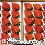 ショッピング新潟 新潟ブランドいちご 越後姫 2Lサイズ 30粒入り そうえん農場 完熟イチゴ/朝採り苺/受付順に出荷